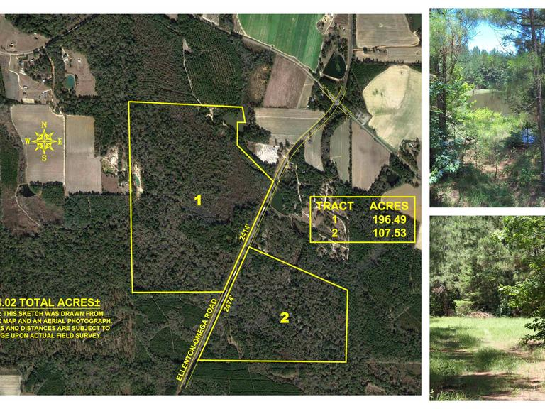 Now Selling Absolute! 304+/- Acre Recreational Tract Located in Colquitt County, Georgia
